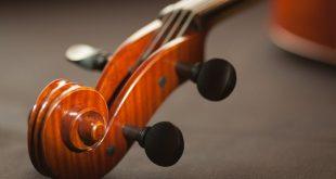 smuikas kaina